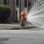 fire hydrant flush