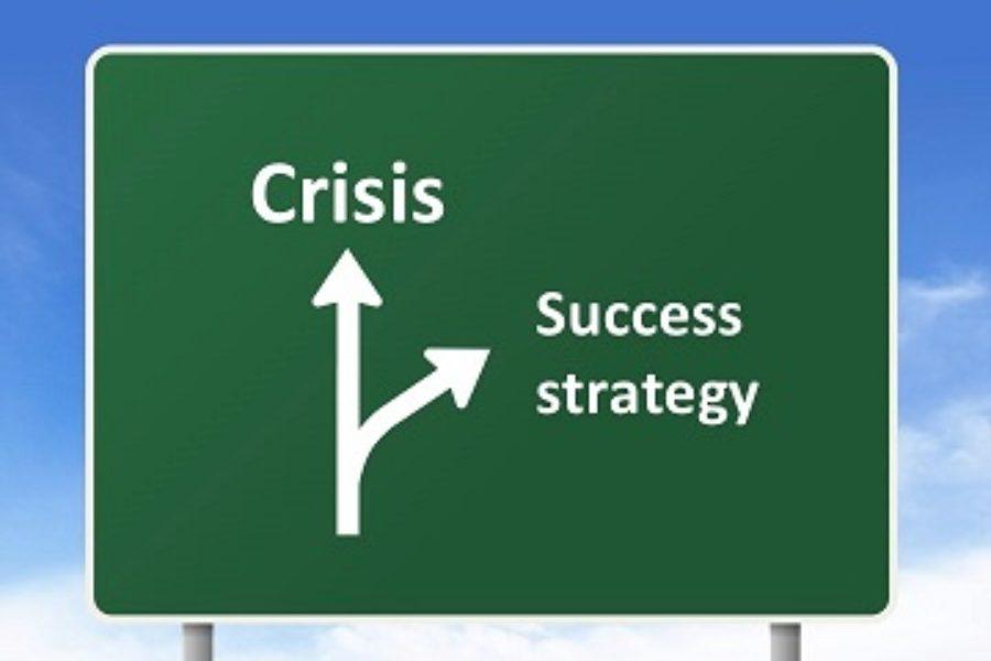 Стратегии иметоды захвата рынка вкризис